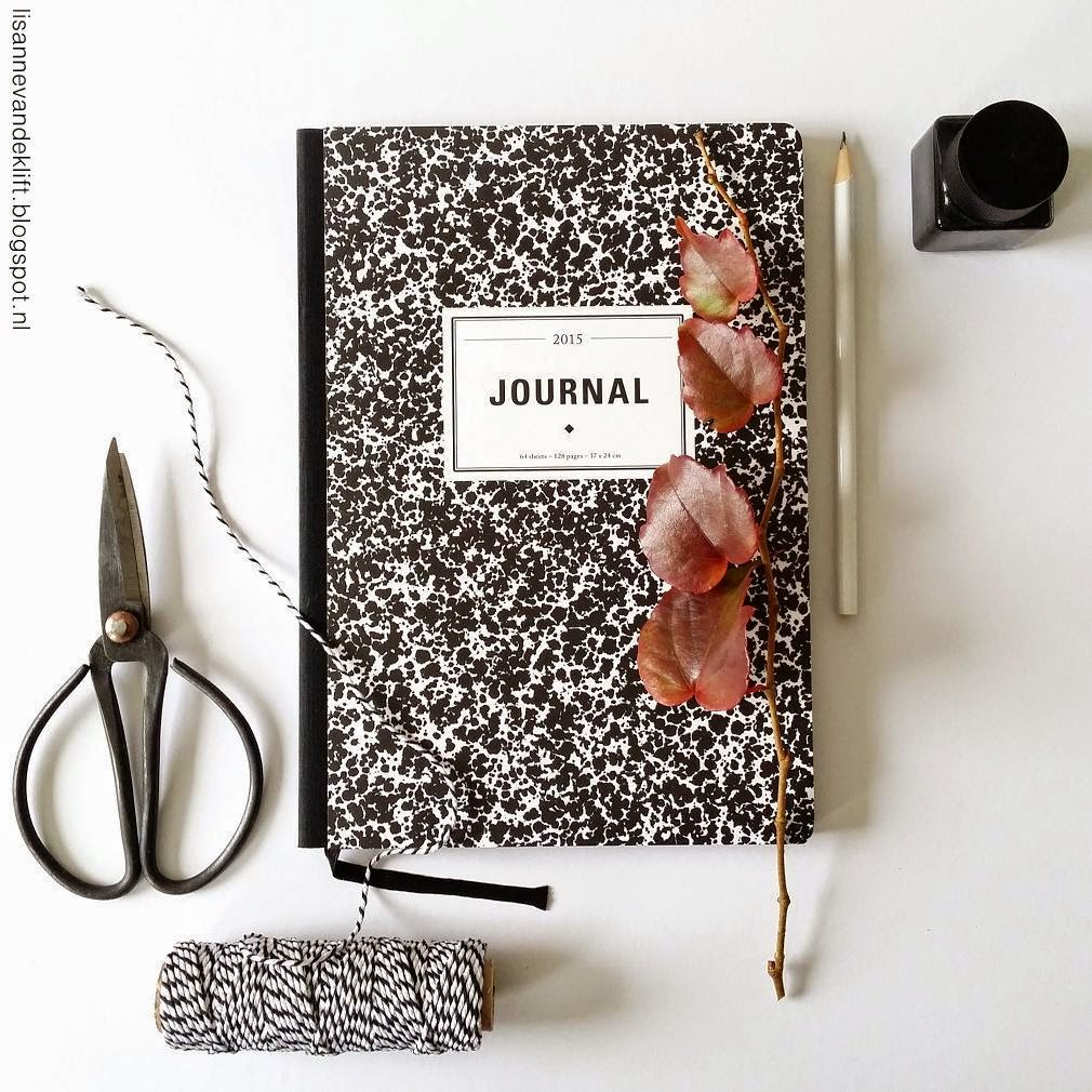 4.Journal 2015 els en nel
